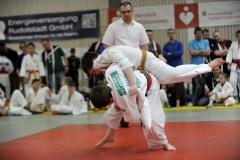 Heidecksburgpokal 9.2.2019 Rudolstadt Aktionen035